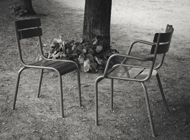 Shutterstock/Elena Dijour/2 Chairs in the Tuilleries